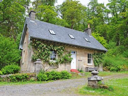 Rose-Schotlandreizen